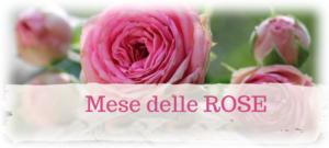 Weekend di sabato 4 e domenica 5 maggio @ Agriturismo Le Tradizioni di Elide | Lombardia | Italia